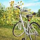 Co można robić na wyjeździe agroturystycznym? – jazda na rowerze